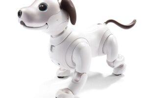 Los 9 mejores perros robot